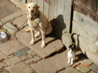 Donar und Minka, ein Herz und eine Seele