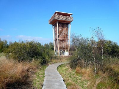 Observation deck with all-round view of the moor